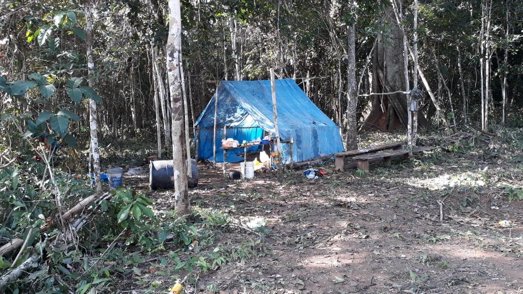 Traficantes de tierra invaden área protegida de Bajo Paraguá en Bolivia