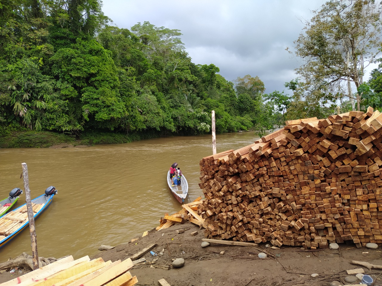 Loggers load canoes to transport sawn balsa lumber along the Copataza River. Image courtesy of Fundación Pachamama.