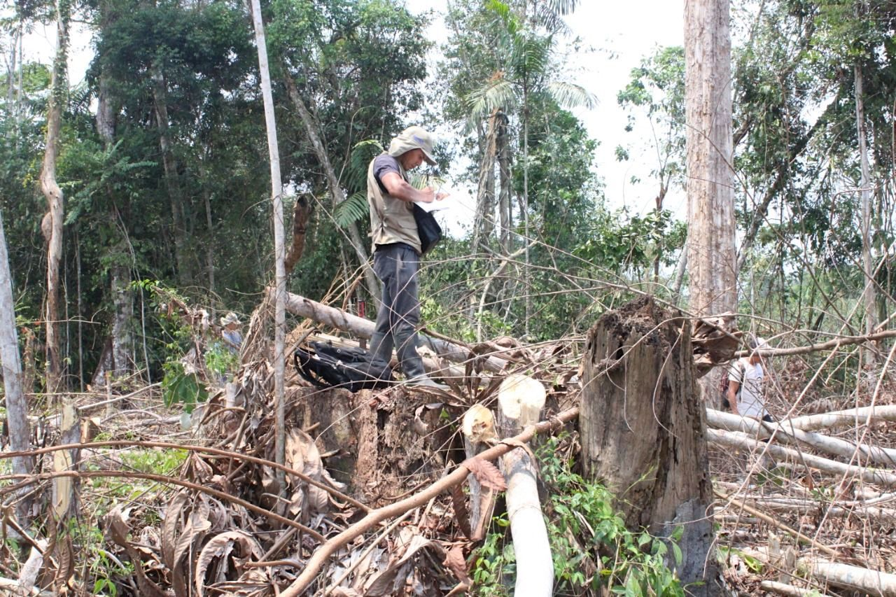An investigation conducted by the Regional Government of Ucayali confirmed the complaints of the Shipibo-Conibo people. Image courtesy of area community members.