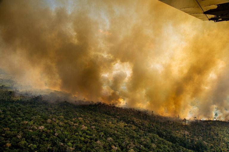 Incendios ardiendo en la Amazonía el 17 de agosto de 2020, junto a los límites del Territorio Indígena Kaxarari, en Labrea, estado de Amazonas. Los bosques talados se encienden intencionalmente para despejar tierras para la cría de ganado. Imagen de Christian Braga / Greenpeace.