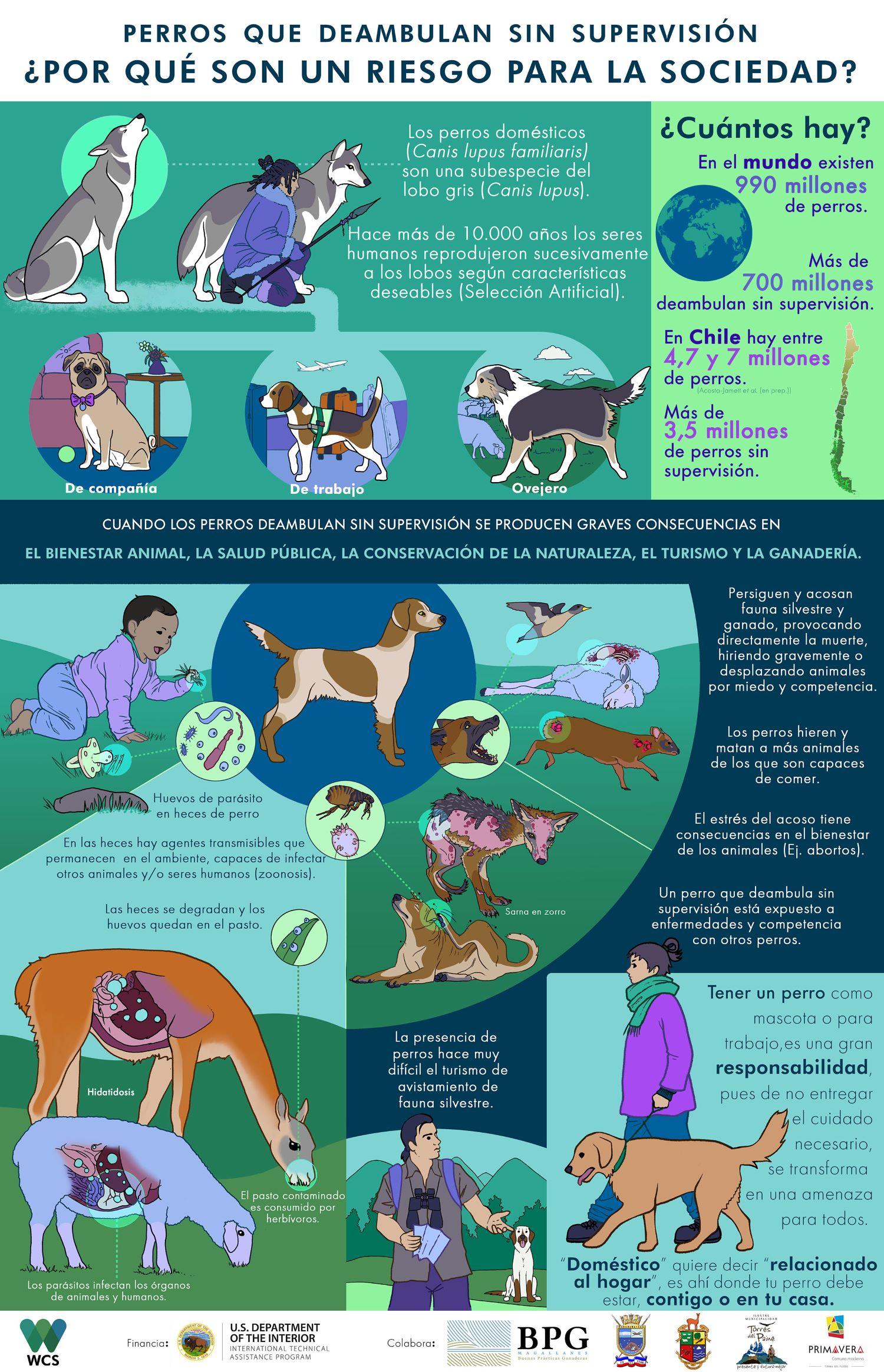 Infografía de WCS Chile.
