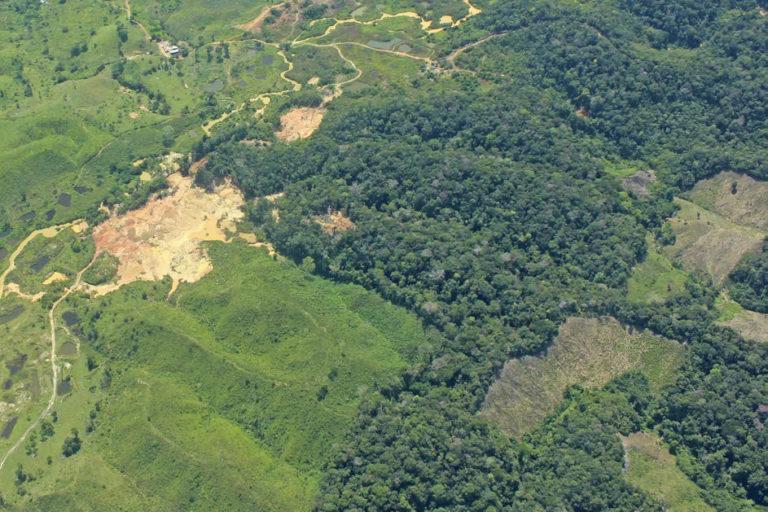 Zona con presencia de explotación de oro de aluvión en tierra y cultivos de coca. Foto: UNODC_SIMCI.