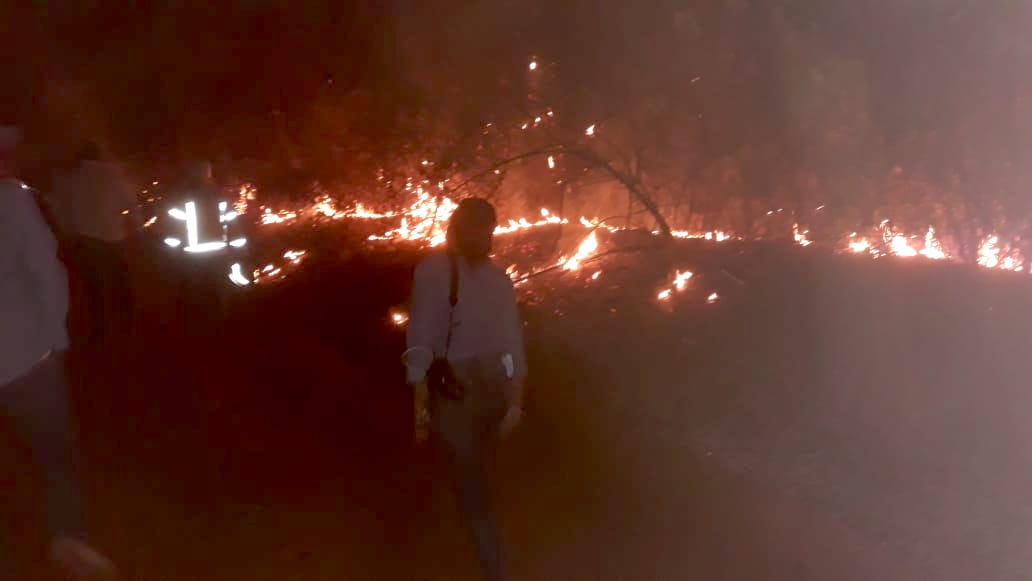 The fire spread to the municipal reserve in the Tucavaca Valley.  Image by Edmundo Barba.