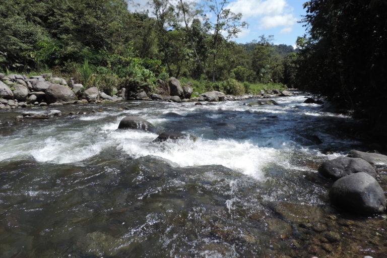 Río Mindo en la provincia de Esmeraldas. Foto: cortesía Windsor Aguirre.