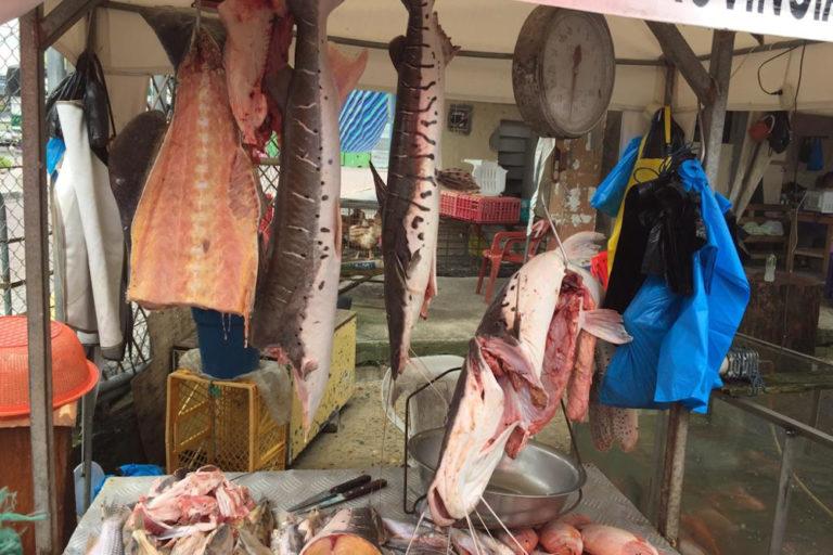 Mercado pesquero en Ecuador. Foto: cortesía Windsor Aguirre.