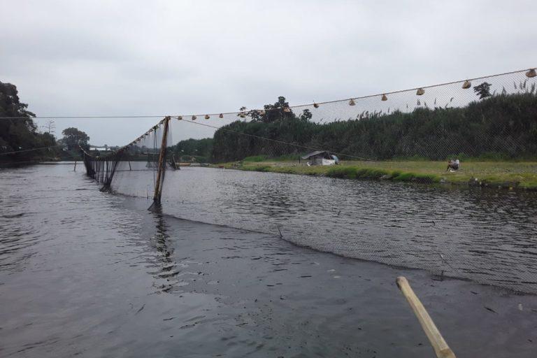 Redes de pesca en el río. Foto: cortesía Windsor Aguirre.