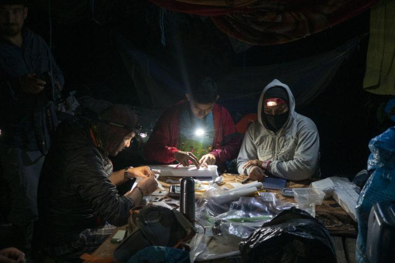 23 investigadores se internaron durante 20 días en el parque nacional Cordillera de los Picachos. Foto: ©Pablo Mejía - WWF Colombia.