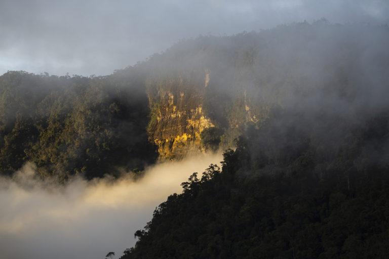 Picos escarpados acompañan los paisajes en el parque nacional Cordillera de los Picachos. Foto: ©Pablo Mejía - WWF Colombia.