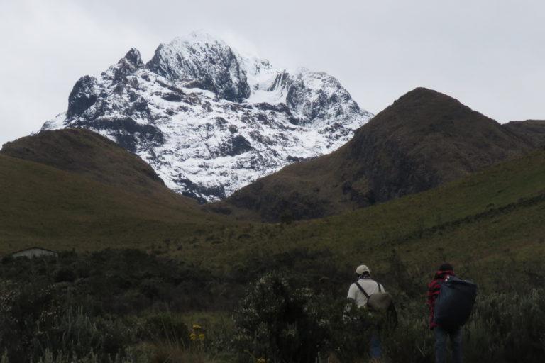 La cordillera de los Andes tiene altos niveles de endemismos en anfibios. Foto: cortesía Mauricio Ortega.