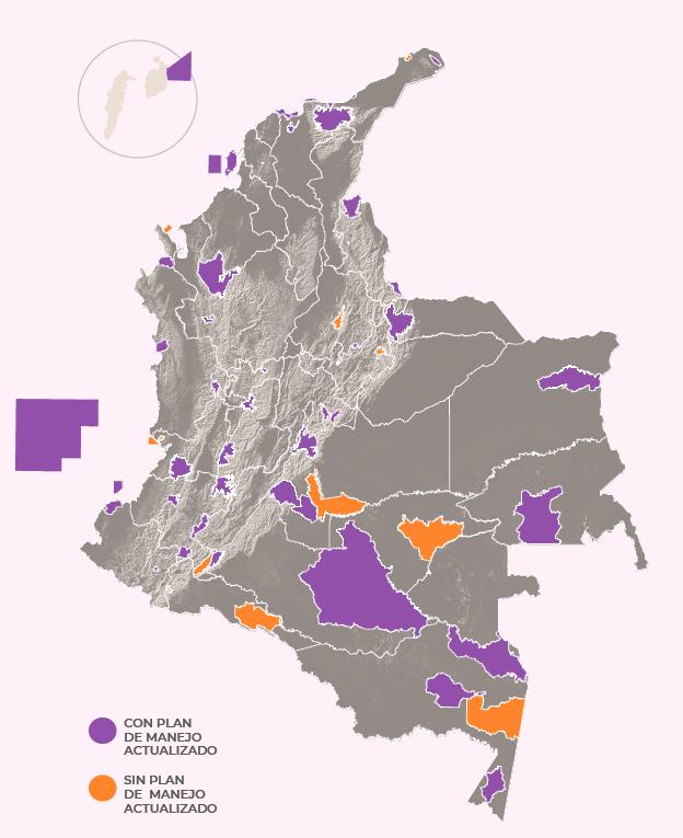 Planes de manejo dentro de los parques nacionales naturales de Colombia. Gráfico de Parques Nacionales Cómo Vamos.