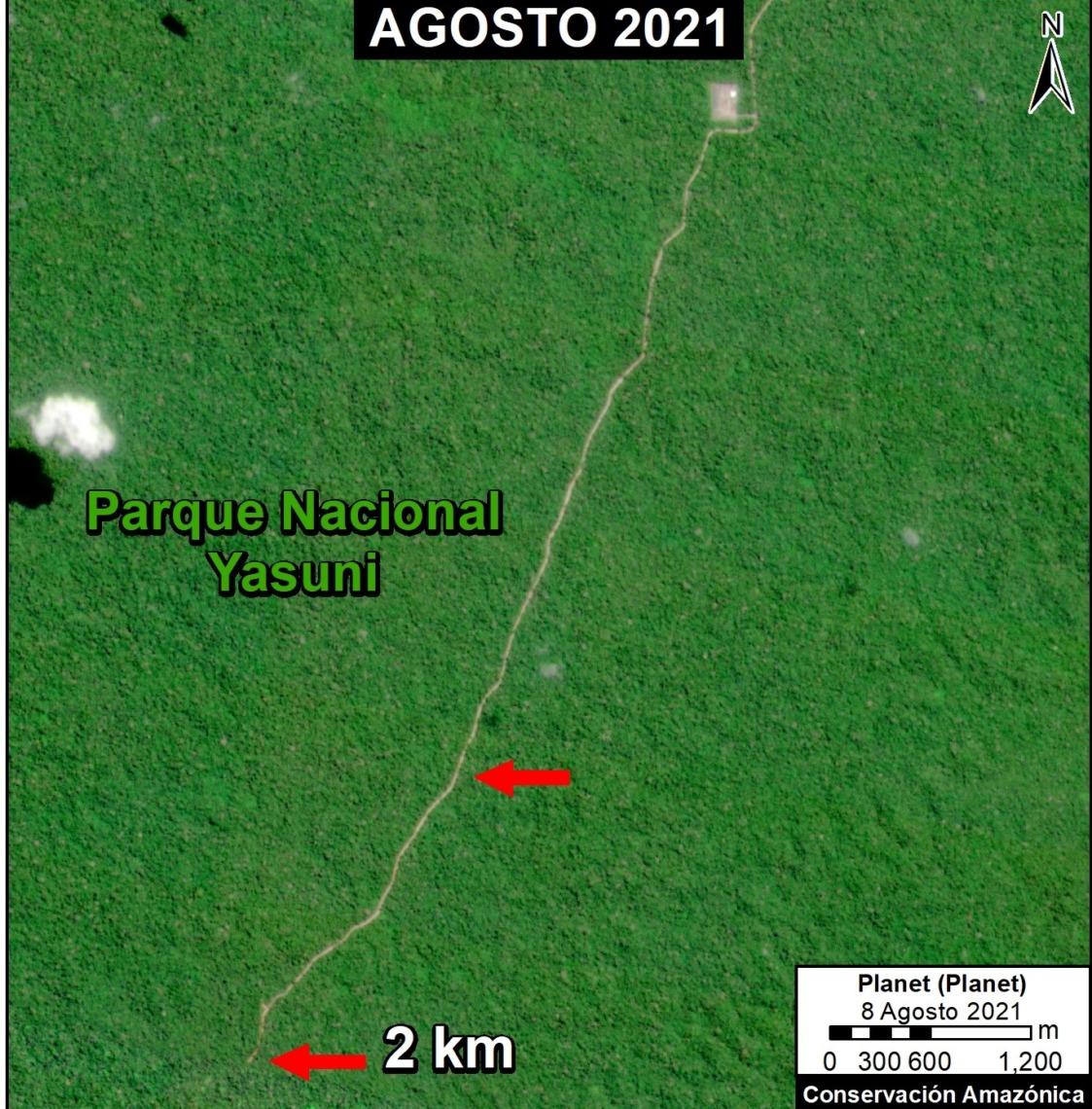 La expansión de la carretera hacia yacimientos petroleros dentro del Parque Nacional Yasuní se extiende en dirección a la Zona Intangible. Datos: Planet, ACA/MAAP.