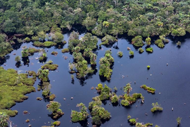 Image aérienne de la forêt tropicale du Bassin du Congo. Photo de Greenpeace à travers Hal Tarris chargé de la Communication