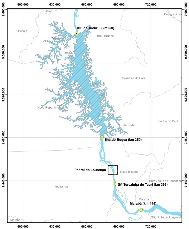Ampliação de hidrovia para transporte de soja e minério na Amazônia impactará habitat de botos e tartarugas