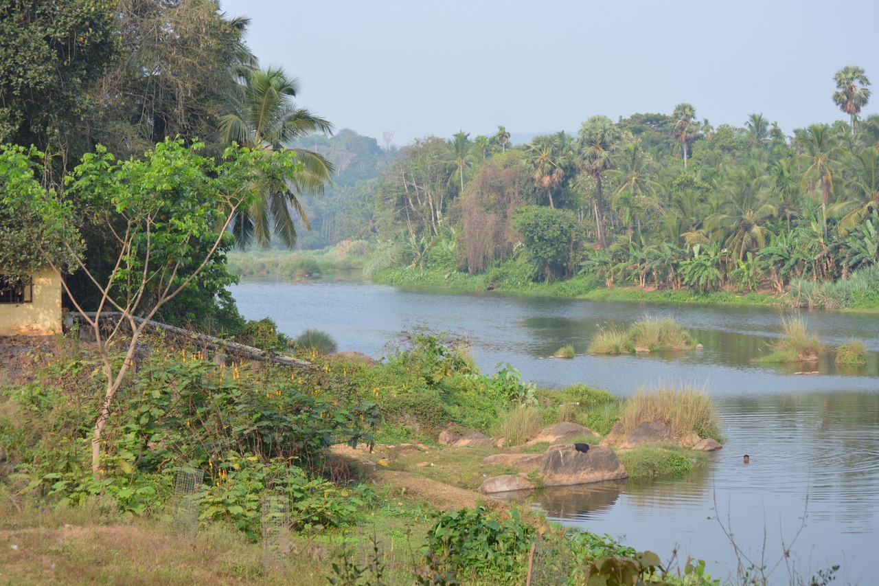 Pic-3-Thoothapuzha-by-S-Gopikrishna-Warrier