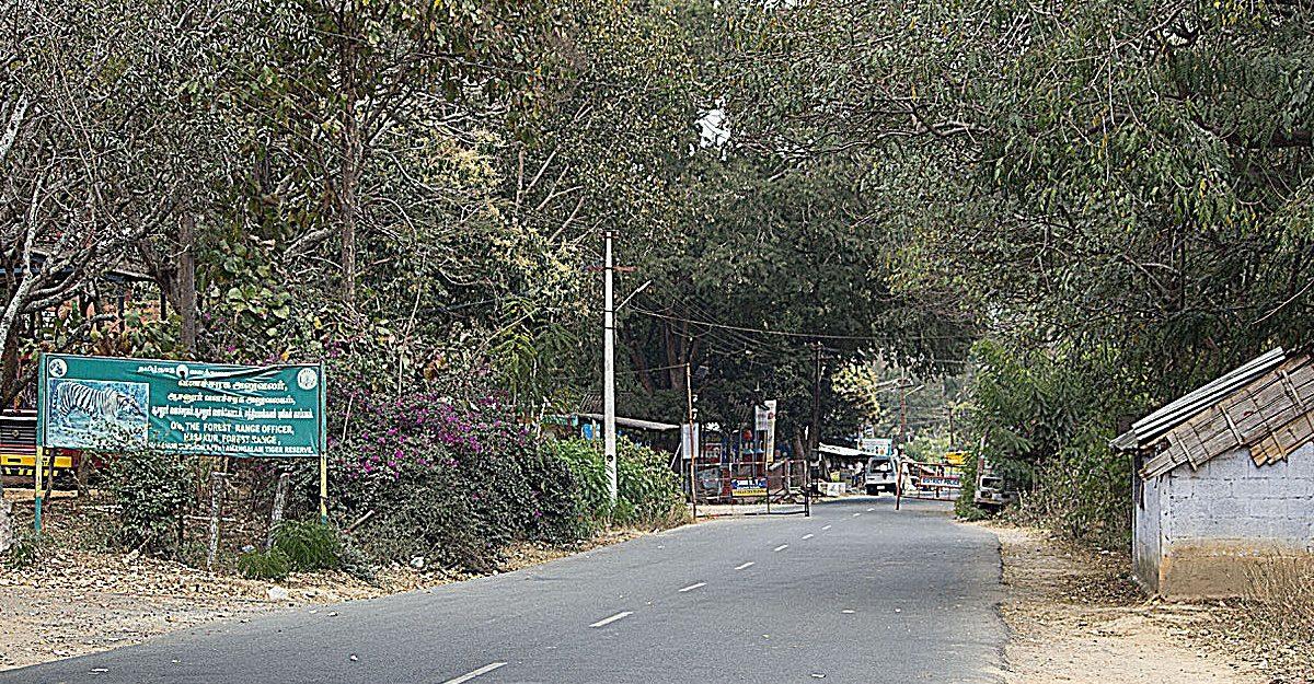 The forest check-post at Hasanur. Photo credit: Sharada Balasubramanian