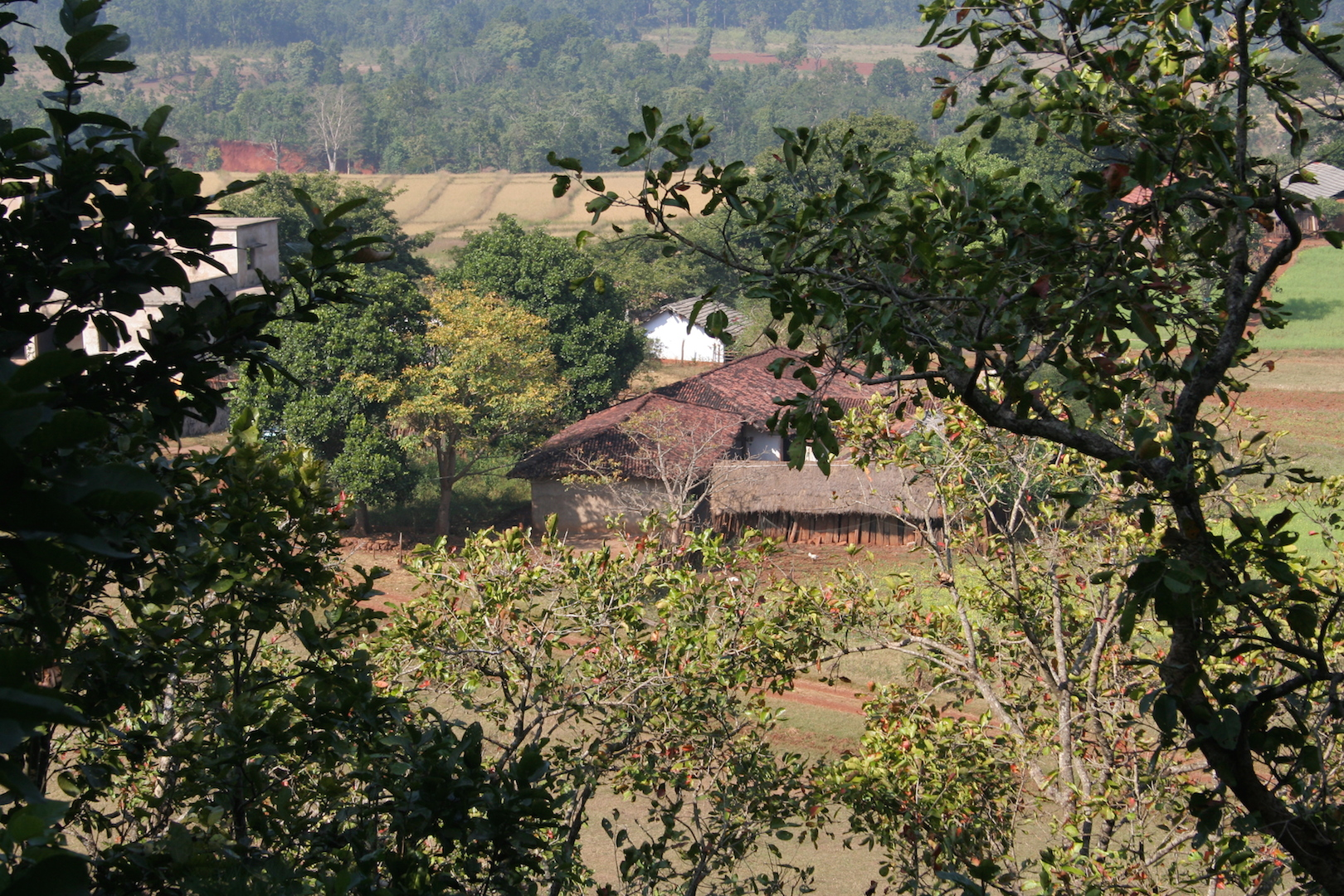 Pic-3-A-tribal-Village-in-the-Similipal-TR-Odisha-IMG_8510