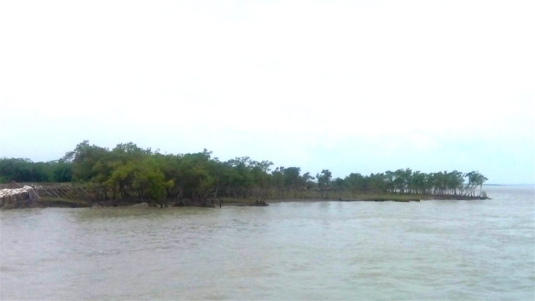 Sagar Island is the largest island in the Indian Sundarbans archipelago. Photo credit: Anwesha Ghosh.