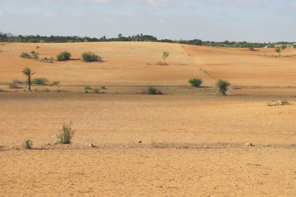 Why land degradation in India has increased and how to deal ...