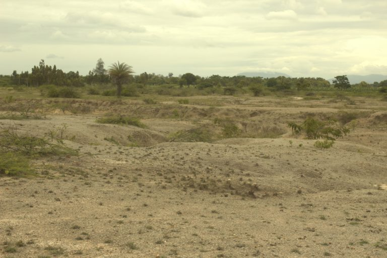 Why land degradation in India has increased and how to deal