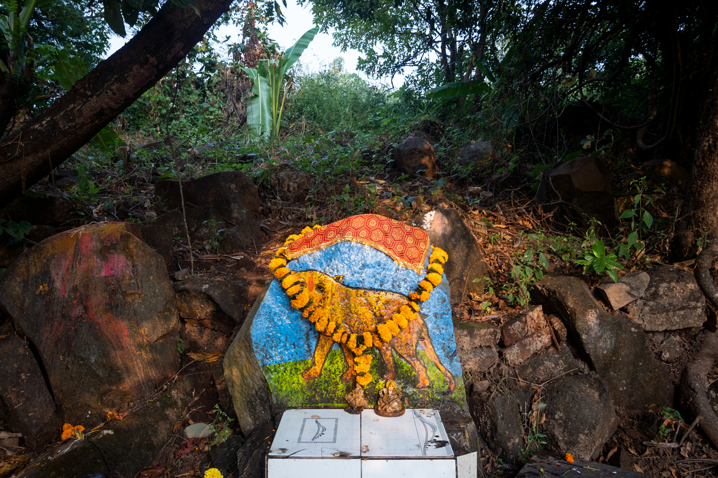 The Waghoba deity is worshipped by the Adivasi communities in Aarey Milk Colony and Sanjay Gandhi National Park. Photo credit: Kartik Chandramouli