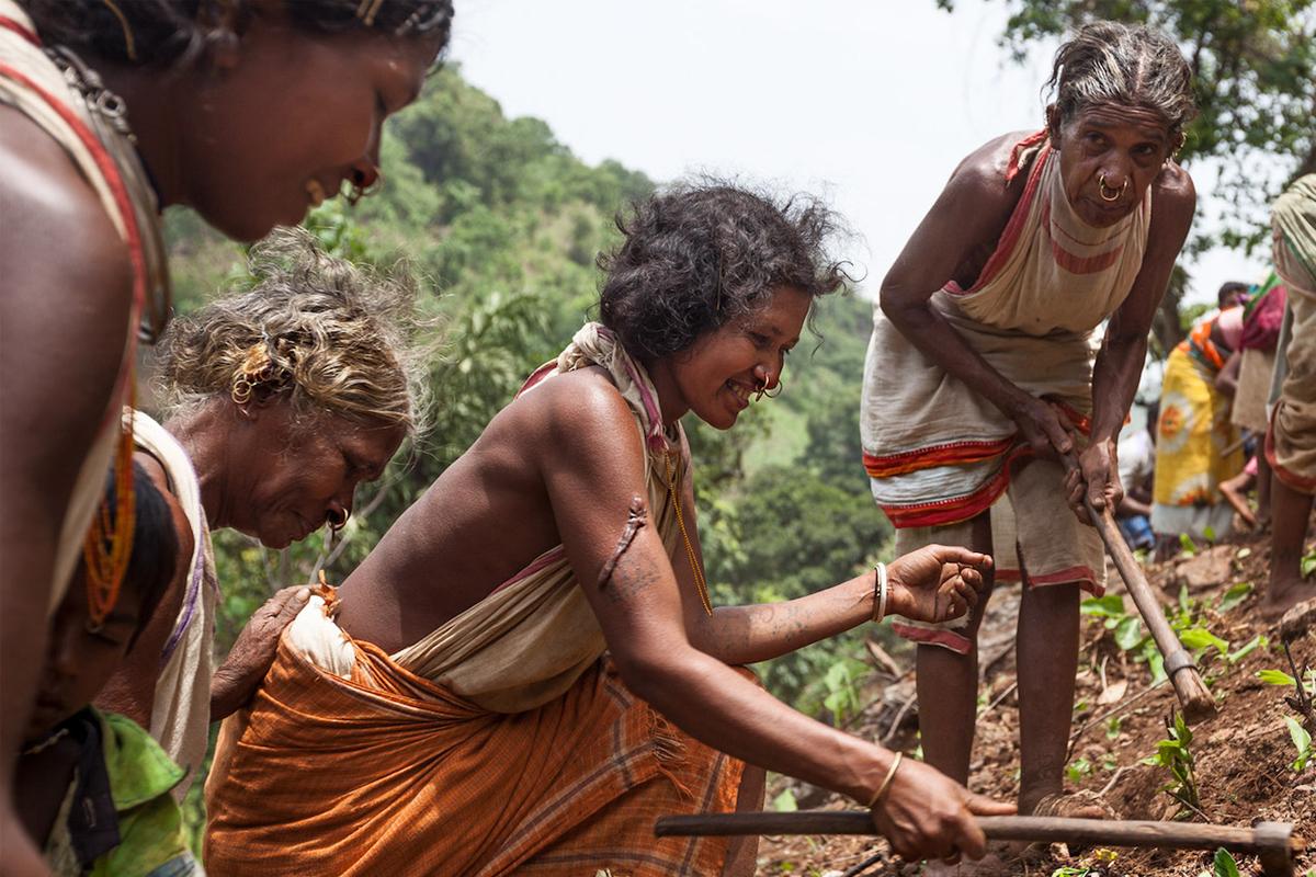 Dongria women from Hutesi village farm the slopes of the Niyamgiri hill range. Image by Indrajeet Rajkhowa.