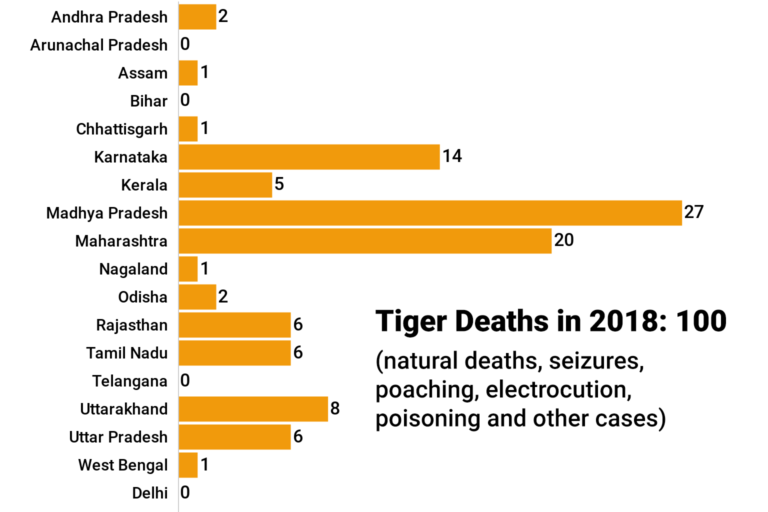 Tiger deaths hit the 100-mark again, but number down from