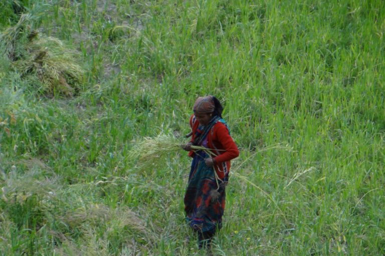Landless farmers in the Indian Himalayas suffer from weakening