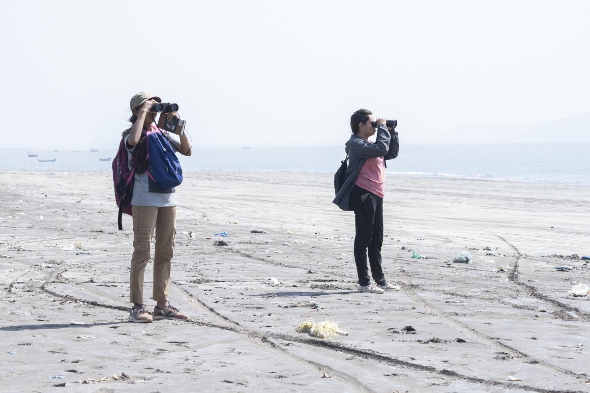 Participants of the 2019 India Bird Race scan a beach for shorebirds in the Mumbai metropolitan region. Photo credit: Kartik Chandramouli.