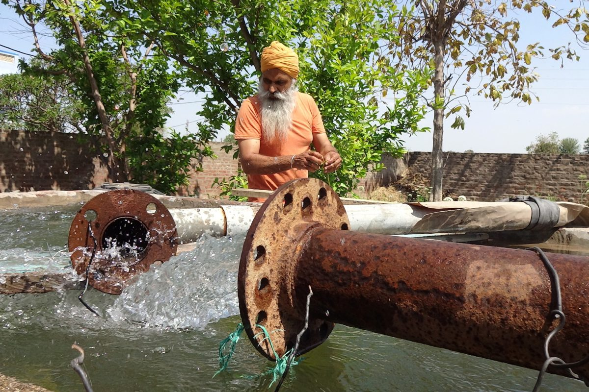 Many of the areas in Punjab have been overexploited for groundwater used for irrigation of paddy fields. Photo credit: Manu Moudgil.