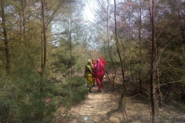 The women have a system of rotational patrolling to guard the mangrove and casuarina forest from timber smugglers and woodcutters. Photo credit: Sahana Ghosh