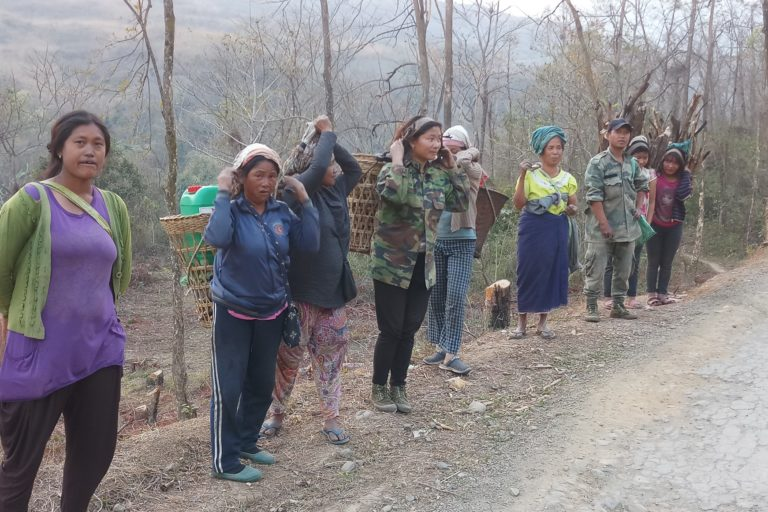 Women collecting firewood in Manipur. Photo by Gurvinder Singh for Mongabay.