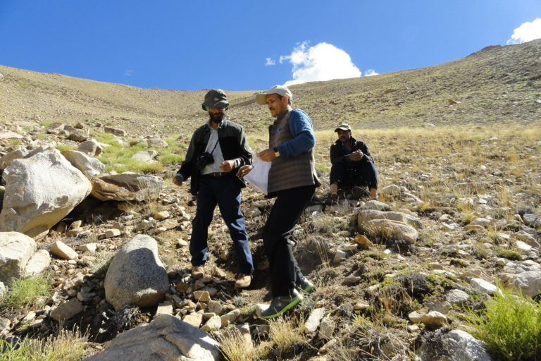 Scientists from National Bureau of Plant Genetic Resources exploring the Leh region for wild relatives of wheat. (Photo credit: National Bureau of Plant Genetic Resources).