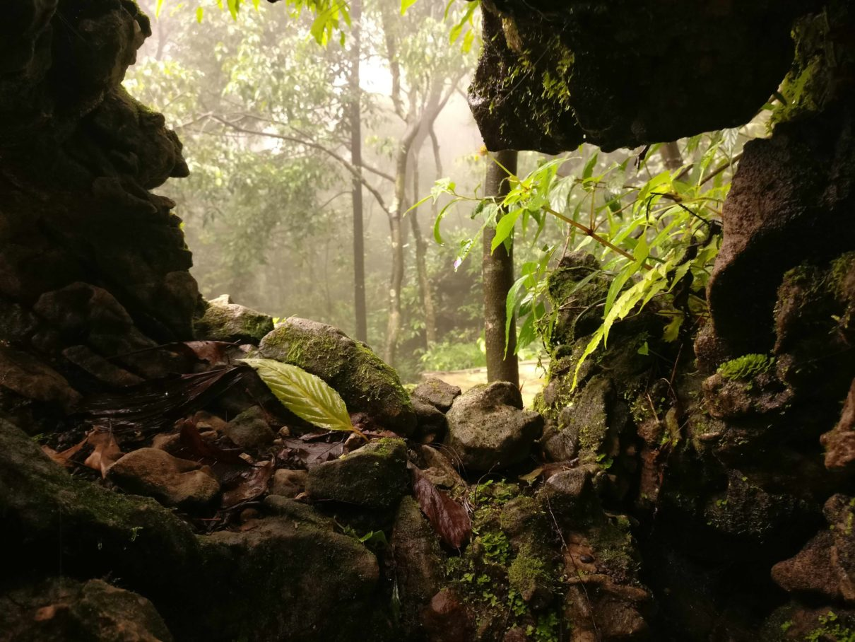 Meghalaya's caves are some of the longest and deepest in India. Photo by Arkadeep Bhattacharya/Wikimedia Commons.