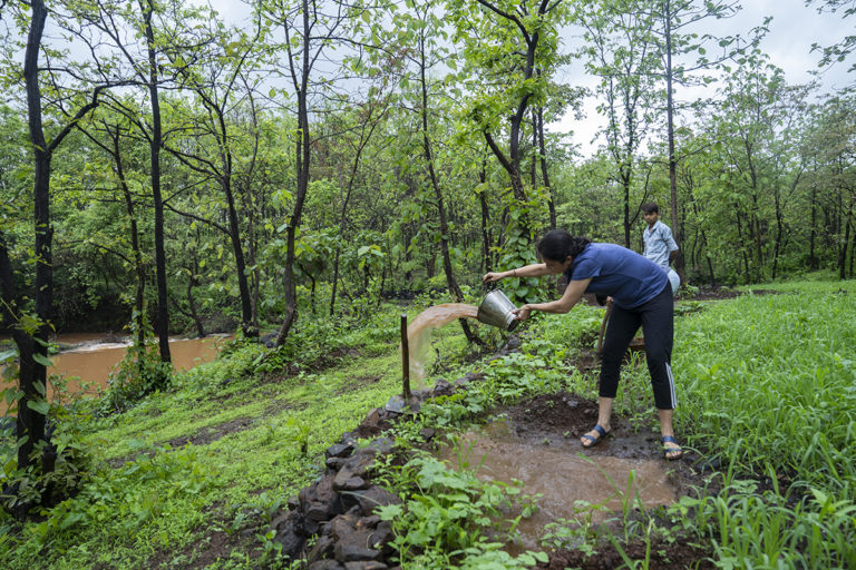 In 1994, a group of 24 nature lovers contributed and bought land in the outskirts of Mumbai for ecological conservation and regeneration. Vanvadi now organises occasional forest food walks and other nature-based events. Photo by Kartik Chadramouli/Mongabay.