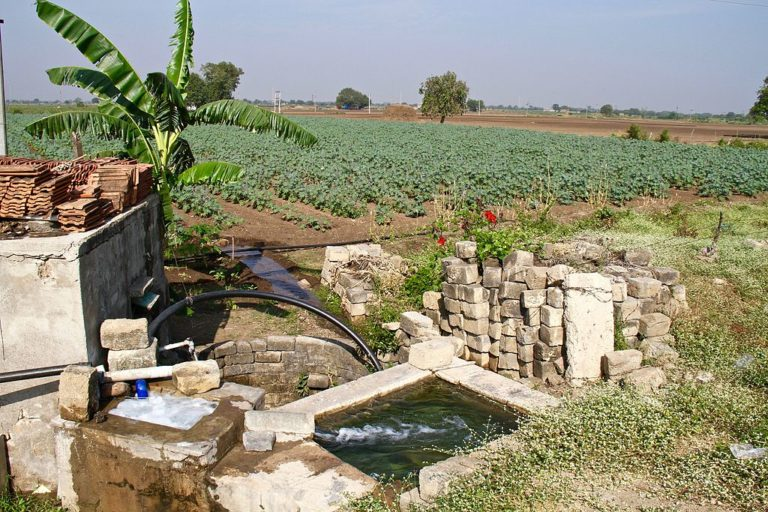 Use of groundwater for agriculture is not regulated in India so far. Photo by TeshTesh/Wikimedia Commons.