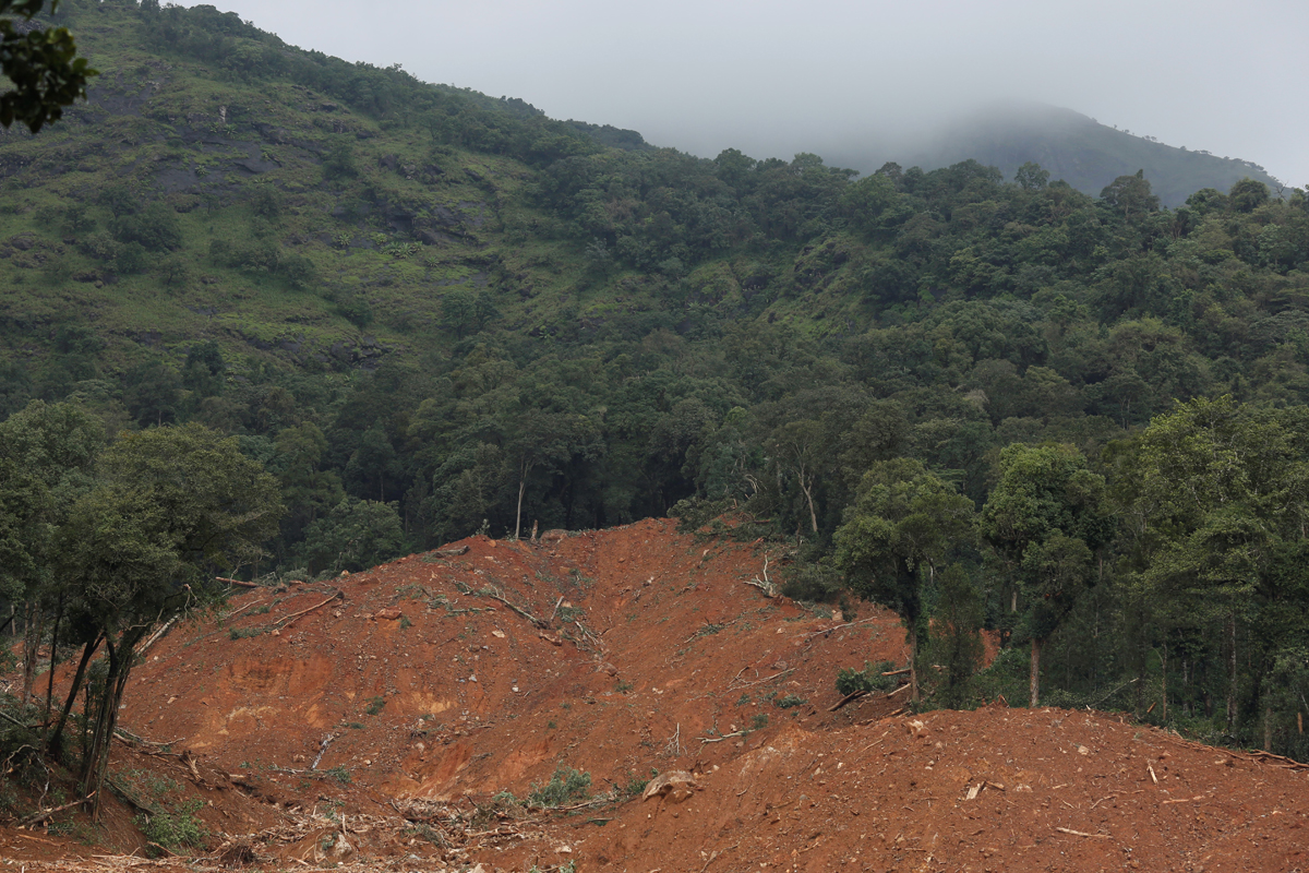 Landslide in Thora village,Kodagu. Photo by Abhishek N. Chinnappa.