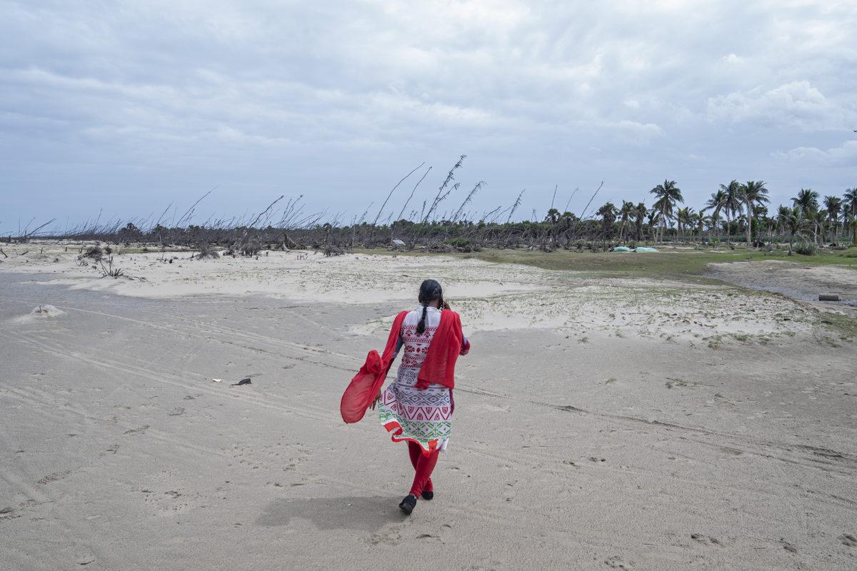 Ranjitha walks near a vast bed of trees that fell during Cyclone Gaja on a beach in Vizhunthamavadi. Photo by Kartik Chandramouli/Mongabay.