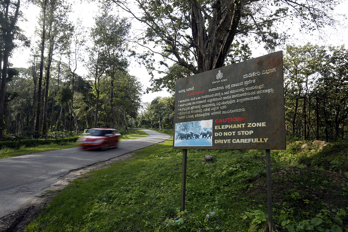Signage to warn motorists of an elephant crossing area in Somwarpet, Kodagu district. Photo by Abhishek N. Chinnappa.