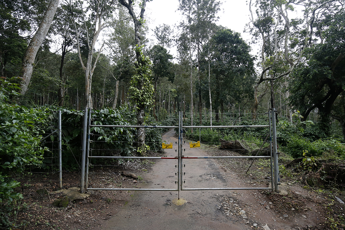 Solar fencing in an estate to prevent elephants from entering. The fences give a mild jolt when touched deterring the animals to enter. Photo by Abhishek N. Chinnappa.