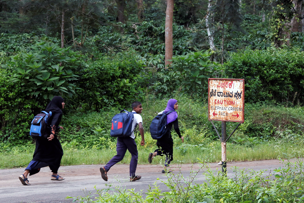 Schoolchildren scamper past an elephant crossing in Maldare, Kodagu. Photo by Abhishek N. Chinnappa.
