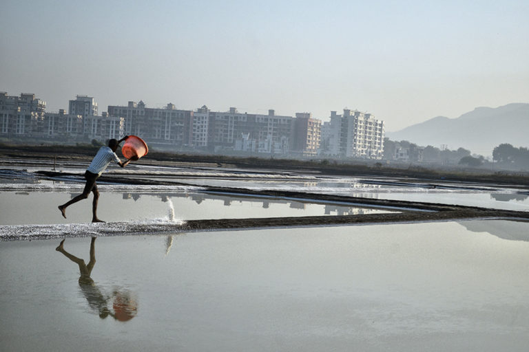 Mumbai has about 5,300 acres of salt pans and about 1,800 acres may soon be opened for low-cost housing projects. Photo by Uday Tadphale.