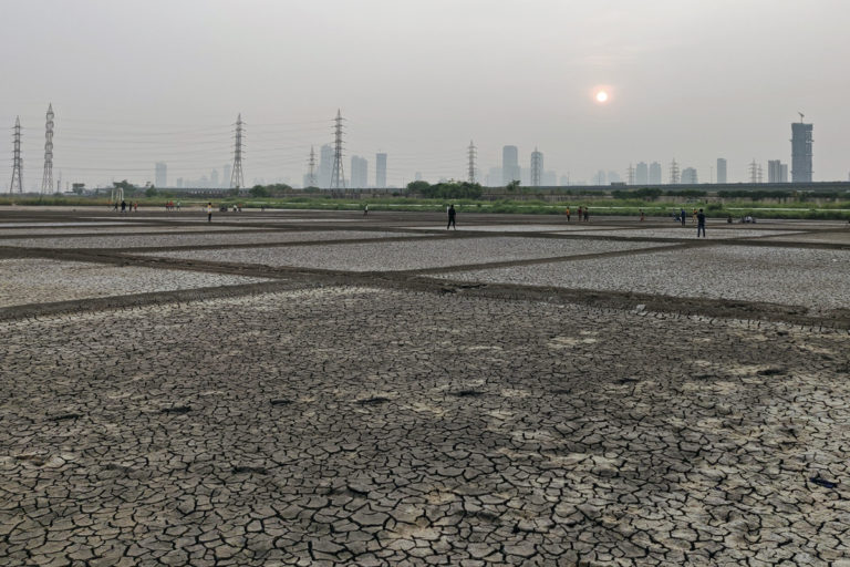 The Bharatiya Janata Party has already cleared its intentions to open up the salt pans for real estate development while their ally Shiv Sena is strictly against it. Photo by Swayam Khanna.