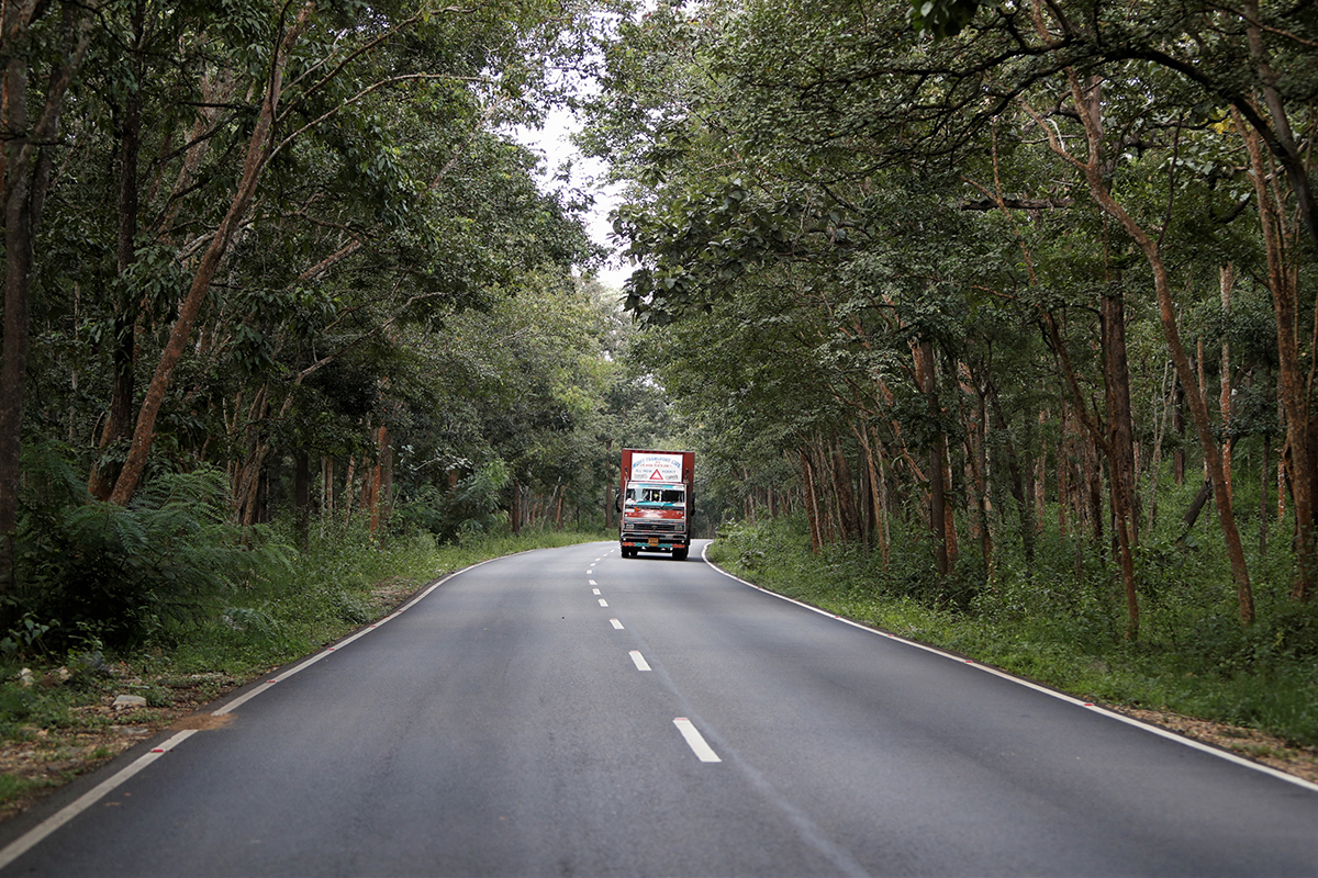 About 19.7 km of the NH 766 that connects Karnataka and Kerala, passes through the core of Bandipur Tiger Reserve in Karnataka. Photo by Abhishek N. Chinnappa.