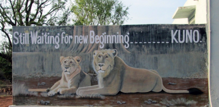 Madhya Pradesh's Kuno Palpur Wildlife sanctuary is all set to be the new home for relocated Asiatic lions from Gir in Gujarat. Photo by Anup Dutta.