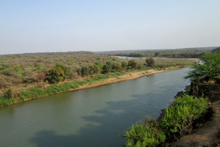 A view of the Kuno river flowing through Kuno Palpur Wildlife sanctuary. Photo by Anup Dutta