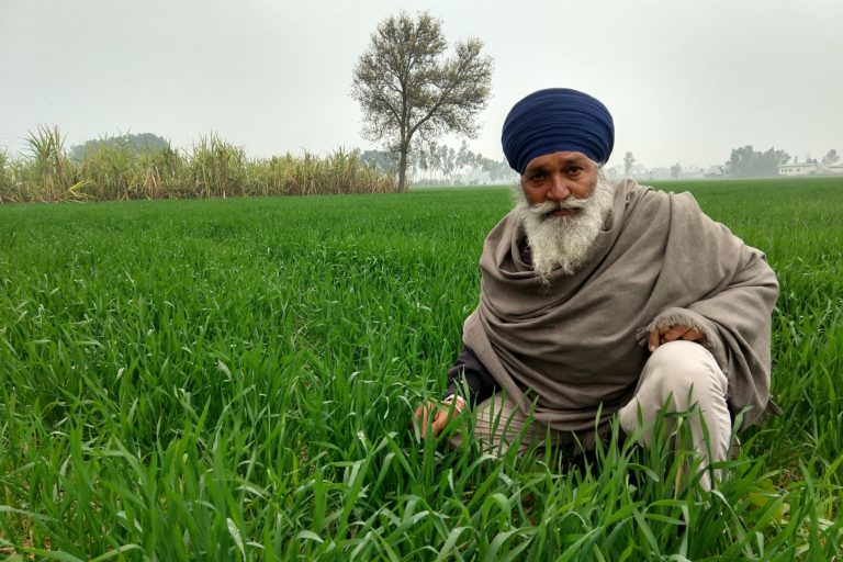 Farmer Gian Singh uses a low-cost local technique which gives him a better yield as well as saves on water.