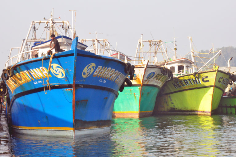 Fishing vessels at a harbour in Kerala. Photo by Sibasis Guha/ICAR-CIFT.