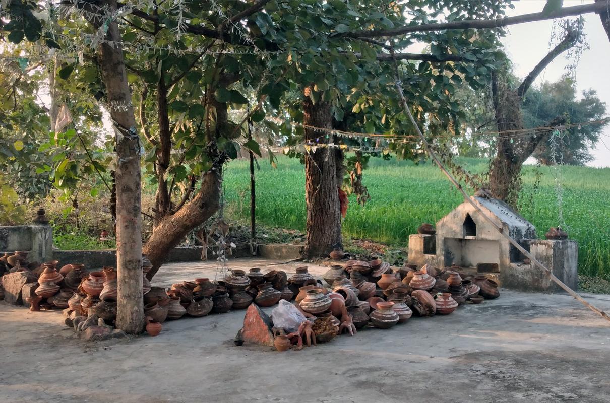 Trees of a sacred grove along with a shrine of a Hindu deity. Photo by Sahana Ghosh/Mongabay.
