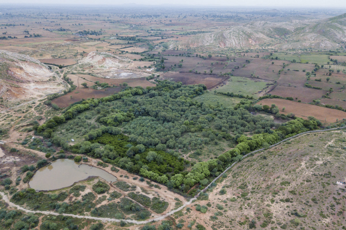 An aerial view of the land transformed by Aditya Singh that now attracts wild animals such as tiger, sambar and wild boars near Ranthambore Tiger Reserve. Photo by Aditya Singh.