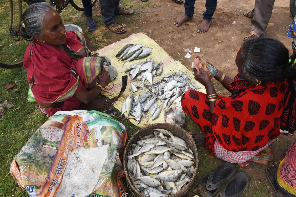 Ganjam Fisherwomen Unite To Get Back Fish Trade From Monopolistic